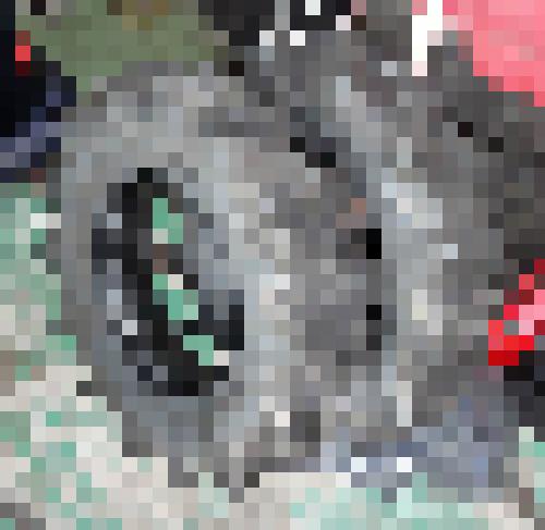 torakuta-1mozaic.jpg